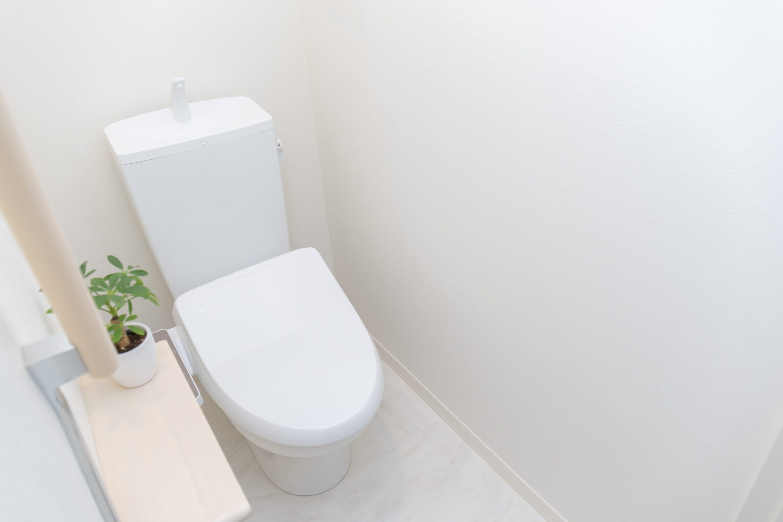 Toilet Replacement Services Tyler TX